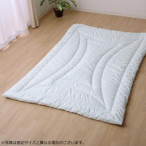 掛け布団 『ヌード  アレルプルーフ』 シングル 約150×210cm  6685509 kazukobo-vip