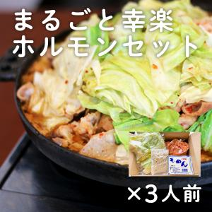 ご当地ホルモン まるごと幸楽ホルモンセット 3人前 豚モツ 煮込み|kazuno-love