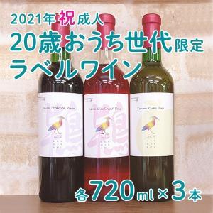 2021年祝成人 20歳おうち世代限定ラベルワイン 3本セット kazuno-love