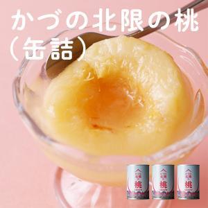 大玉 白桃 北限 かづの北限の桃(缶詰) 3個セット
