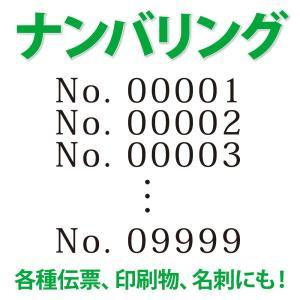 オプション ナンバリング kazuno-online