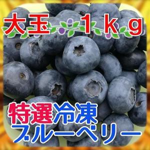 【国産・農薬不使用】完熟冷凍ブルーベリー[大玉]1kg※化粧箱なし※