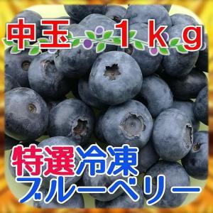 【国産・農薬不使用】完熟冷凍ブルーベリー[中玉]1kg【平成29年産・急速冷凍】