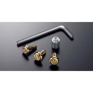 トヨタ純正 ロックボルト・ゴールド (ナンバープレート用盗難防止ボルト)|kazz