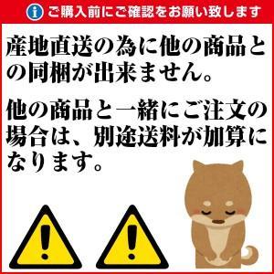 (お歳暮 御歳暮 ギフト)山形県鶴岡産 冷凍 殿様のだだちゃ豆(200g×5袋) |kbs1093|02