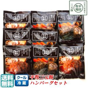 平田牧場三元豚のハンバーグ(2種)が、1人前ずつセットになった、便利でムダのない「平田牧場三元豚・...