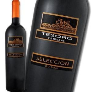 赤ワイン スペイン テソロ・デ・ブーリャス・セレクシオン 2008 Tesoro de Bullas Seleccion wine Spain|kbwine