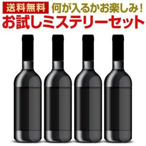 ワインセット お試しワイン4本ミステリーセット 赤ワイン 白ワイン スパークリングワインなど wine set