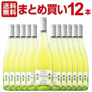 スパークリングワイン まとめ買い レ・ヴァカンツェ・シャルドネ・フリッツァンテ・デル・ヴェネト 12本 wine kbwine