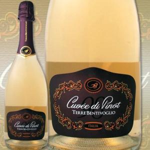 スパークリングワイン テッレ・ベンティヴォーリオ キュヴェ・ディ・ピノ スプマンテ エクストラ・ドライ wine sparkling 京橋ワイン 赤 白 セット wine