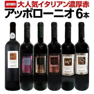 赤ワイン セット イタリア プーリア 6本 wine set 750ml 第1弾 大人気 Italy...
