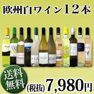 白ワインセット 送料無料 1本あたり665円(税別) 採算度外視の大感謝 厳選白ワイン12本セット