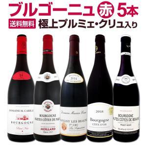 極 プルミェ クリュ 一級畑 入り 厳選ブルゴーニュ赤ワイン5本セット wine set bourg...