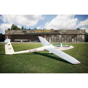 1/48 DG-1000S グライダー「アグビー」/ブレンガン48006/