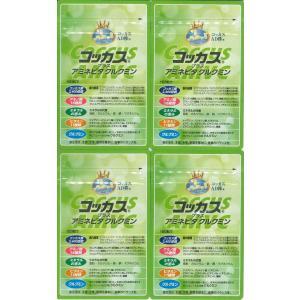 新製品コッカス+アミネビタクルクミン4袋set・アドバンス腸内細菌食品・送料無料  (生産完了1粒100食コッカス・健康100食改良版)|kdckdc