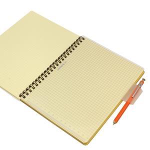 ロルバーン ポケット付メモ/ダイアリー A5サイズ用 下敷き ブルー  500435 425|kdmbz|03