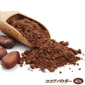 ココアパウダー 40g カカオパウダー / オランダ産 カカオ豆使用 ココア ホットドリンク 製菓 ショコラ 手作り クッキー|ke-thi-fuudo-rabo