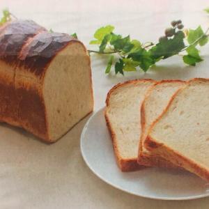 premium T 1kg プレミアムT パン用粉 熊本県産 強力粉 熊本製粉 ミナミノカオリ パン用 小麦粉 1キロ パン 強力粉 製パン ke-thi-fuudo-rabo