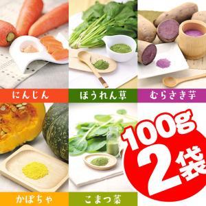 野菜パウダー 100g×2袋 送料無料 メール便 野菜ファインパウダー にんじん ほうれんそう 小松菜 かぼちゃ 紫いも 2点 / 同梱不可 国産野菜100% 離乳食 介護食|ke-thi-fuudo-rabo