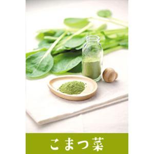 野菜パウダー 野菜ファインパウダー 小松菜 20g / こまつな 国産野菜100% 製菓 製パン 製麺 料理に 離乳食や介護食にも 野菜パウダー|ke-thi-fuudo-rabo