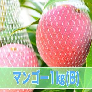マンゴー B品 1kg箱|kedoku-mango