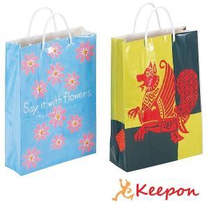 紙の手さげ袋つくり B(組立済) 卒業 卒園 記念品 制作 手作り プレゼント 紙袋 手作り|keepon