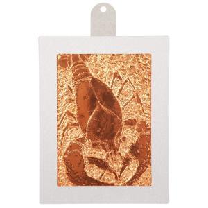 ヘラ押し銅箔レリーフ板セット (38153)   (メール便可能) 伝統工芸 工作 彫刻 彫金|keepon