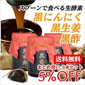 まとめ買い スタミナ 黒にんにく 黒生姜 黒酢 スプーンで食べる ペースト 生酵素 強い パワー 濃...