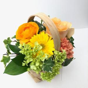 アレンジメント オレンジ系 フラワーギフト  お誕生日 お祝い 歓送迎  ハロウィン|keihan-engei