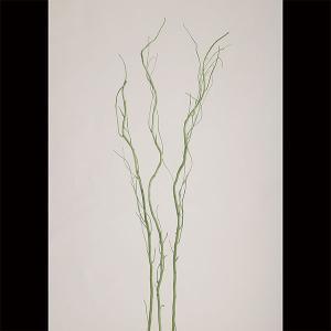 ドライ素材 うんりゅう柳 グリーン 全長110cm 6本セット 1束3本×2束 緑 ウンリュウヤナギ...