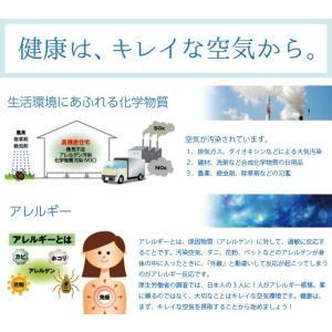 快適安眠、アレルギーサポート【けいそうmakura&ストライプ模様100%日本製綿ピロケース】子供用、沖縄、北海道以外送料無料|keisouseikatu|03