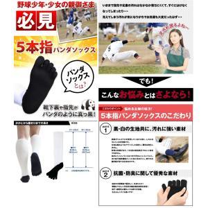 5本指  靴下 パンダ ハイソックス メンズ 強い スポーツ アウトドア ソックス 少年用 日本製 五本指|kenbee-sports-socks|02