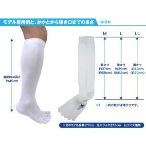5本指  靴下 お試し 2足セット 【送料無料】 ハイソックス メンズ 強い スポーツ アウトドア ソックス 日本製 五本指|kenbee-sports-socks|06