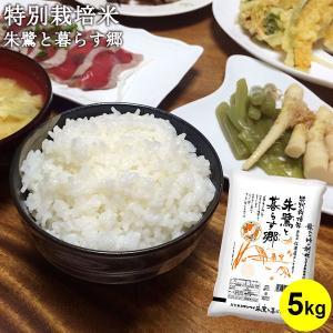 米 お米 5kg 特別栽培米 新潟 佐渡産コシヒカリ 29年...