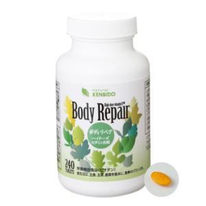 健美堂ボディリペア-ハイドーズビタミンB群- 240粒 約60日分 ビタミンB|kenbido