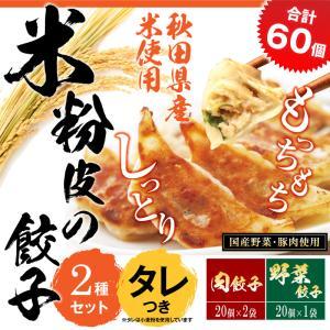 【送料・税込】米粉の皮で包んだ餃子セットB(野菜餃子1袋×肉餃子2袋×タレ5個×赤い友1個)