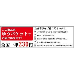 剣道 小手 甲手下手袋 紺色 5本指 洗える (ゆうパケットOK)|kendo-express|02
