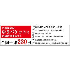 剣道 小手 下サポーター 右手 日本製 (ゆうパケットOK) 甲手 038-KW2B kendo-express 06