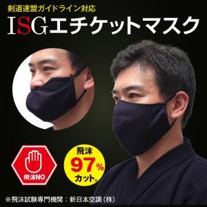 剣道 面「ISGインナーマスク」 【飛まつ予防 剣道具 サポーター】 (ゆうパケットOK)