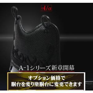 剣道 胴 A-1α 選べる変塗胴台 黒タタキ・紺タタキ・溜・EMBO黒磨き