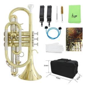 Bb フラット コルネット プロフェッショナル 真鍮楽器  / キャリングケース 手袋 クリーニング布 ブラシ付|kenji1980-store
