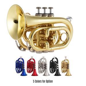 ミニトランペット  Bbフラット 高品質 真鍮 管楽器 コンパクトサイズ 初心者 プロフェッショナル 5カラー|kenji1980-store