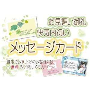 無料 快気内祝い・お見舞い御礼用メッセージカード (当店でお買上のお客様限定)ご購入数分のみ|kenjya-gift