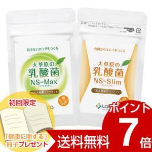 ラクア 大草原の乳酸菌 NS-Max1袋+NS-Slim1袋 セット 送料無料 ネコポス発送|kenkami