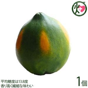 石垣産 サンゴパパイヤ 種なし 約700g×1個 果汁たっぷり 糖度13.8度 香り高く繊細な味わい フルーツ 沖縄 土産 果物 条件付き送料無料