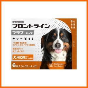 【医薬品 犬用】フロントラインプラス ドッグ XL [40〜60kg未満] 6本入|kenko-bin