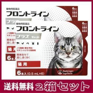 [動物用医薬品 猫用] フロントラインプラス キャット 6本入 (0.5mL×6)2箱セット★|kenko-bin