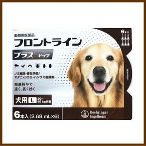 [動物用医薬品 犬用] フロントラインプラス ドッグ L [20〜40kg未満] 6本入 (2.68mL×6)|kenko-bin