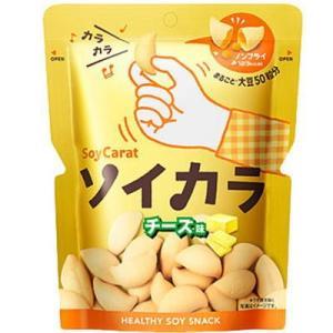 ソイカラ チーズ 27g |kenko-departs