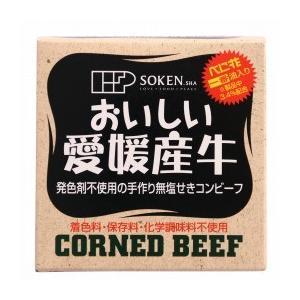 創健社 愛媛産牛 無塩せきコンビーフ 80g|kenko-ex